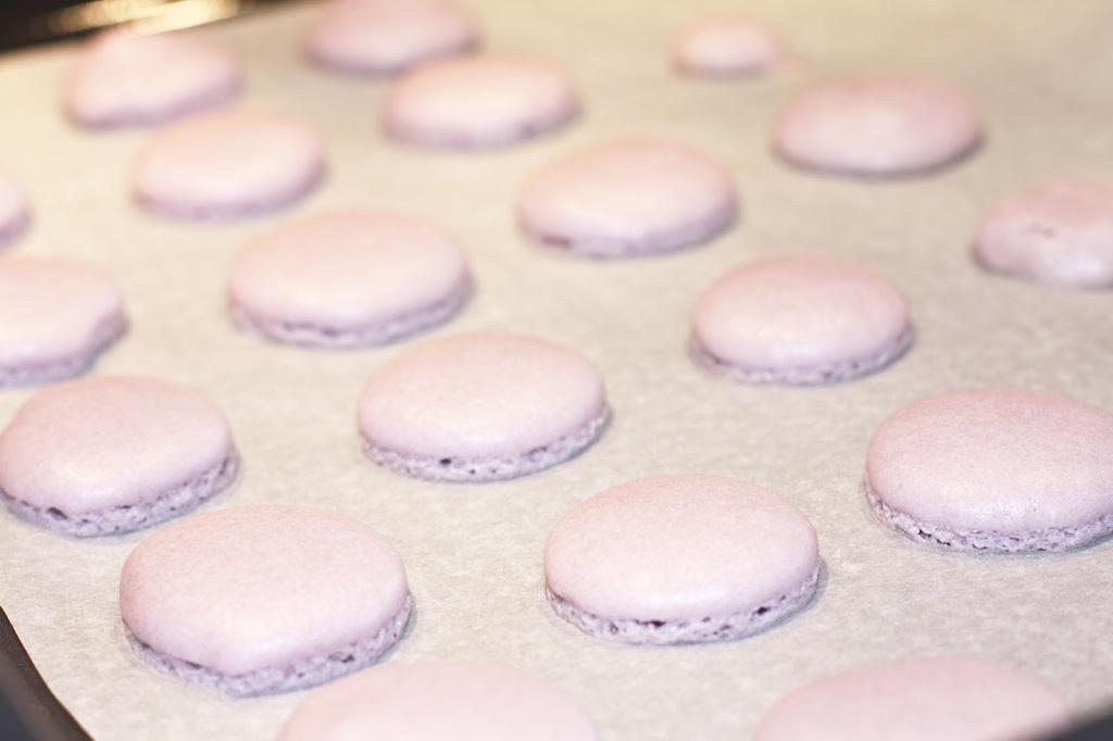 Macarons Backblech