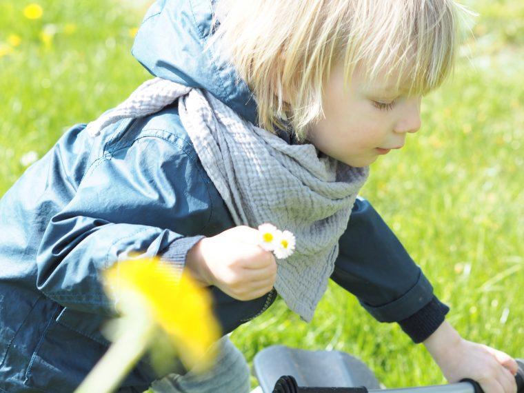 Falcotto Kinderschuhe im Test auf Maison Pazi, tipps für den Kauf von Kinderschuhen